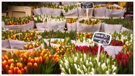 Lecozycorner-Fleurs-Amsterdam